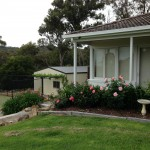 Painting Services Chirnside Park